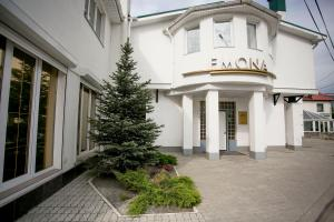 Hotel Emona - Verkhneye Sancheleyevo