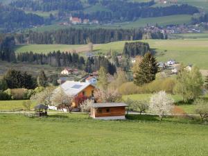 Chata Ferienhaus Grohs Neumarkt in Steiermark Rakousko