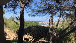 Juniper View, Porto Cervo