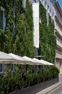 The Harmonie Vienna, Hotely  Vídeň - big - 28