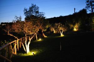 Agriturismo Monte Maggio, Farm stays  Lapedona - big - 38