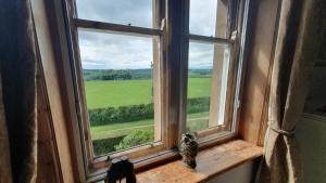 Hay Farm House, Bed & Breakfast  Ford - big - 41