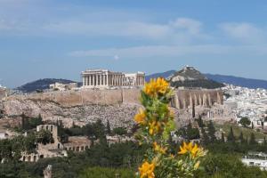 Cozy studio 5mins walk from Acropolis museum