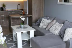 Grey Apartment