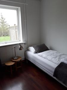 Standard Single Room with Shared Bathroom Guesthouse Geldingaholt