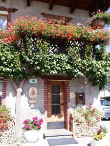 Fiori Cuco B&B - Accommodation - San Vito di Cadore
