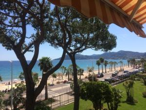 Cannes Terrace Beach Front & Sea view, Apartmány  Cannes - big - 140