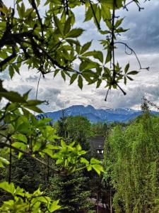 Mountain View Apartment Zakopane