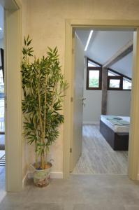 Apartment Dona, Apartments  Chernomorets - big - 71