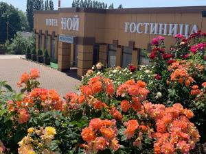 Отель NOI Hotel Kropotkin Centre Shosseynaya, Кропоткин