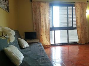Apartamento Botanique Coímbra
