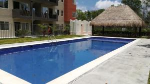Cancún total- Renta de autos-Espectaculos-Tours