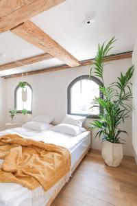 Apartamenty Monka