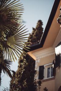 obrázek - Villa Arnica
