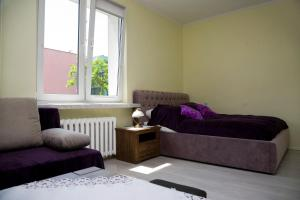 Lublin City Centre Chopina One Free Parking