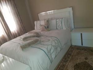 FNT Guesthouse, Pensionen  Johannesburg - big - 5