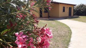 Villa Azzurra, Ferienhäuser  Capo Vaticano - big - 42