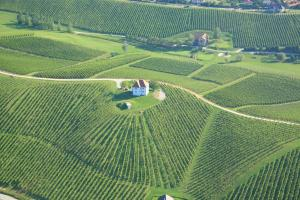 Wine Grower's Mansion Zlati Gric