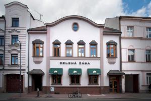 Auberges de jeunesse - Penzion Zelená Žába