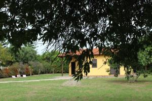 Villa Azzurra, Ferienhäuser  Capo Vaticano - big - 3