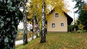 Hiša med brezami