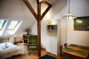 Viking Apartamenty Strych