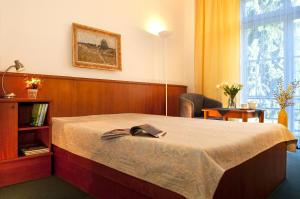Comfort Double or Twin Room Kupelny Hotel Palace