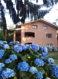 Villa Prati del Vivaro - AbcAlberghi.com