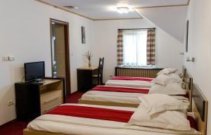 Pensiunea Komodo, Гостевые дома  Pecica - big - 10