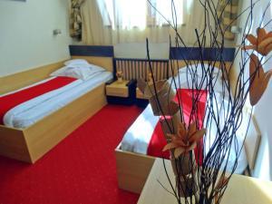 Pensiunea Komodo, Гостевые дома  Pecica - big - 32