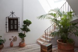 Balcón de Córdoba, Hotely  Córdoba - big - 108