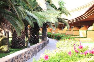 Oasis Village, Hotel  Corralejo - big - 24