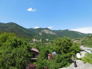 Akaki's Guesthouse, Penzióny  Borjomi - big - 6