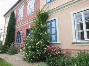 Romantik-Villa LebensART - Apartment - Reichenfels