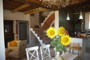 Casa Mimmo - Civitella d'Agliano