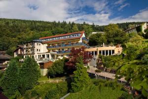 Hotel Rothfuss - Calmbach