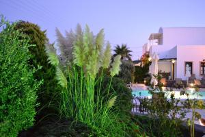 Anthonas Apartments, Apartmánové hotely  Imerovigli - big - 27
