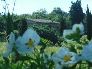 La Fontaiola