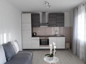 Apartment Star Danica***