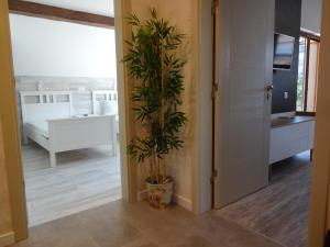 Apartment Dona, Apartments  Chernomorets - big - 10