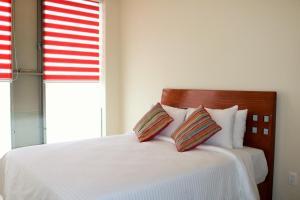 Puerta Alameda Suites, Appartamenti  Città del Messico - big - 9