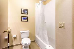 Comfort Inn & Suites IAH Bush Airport – East, Hotely  Humble - big - 4
