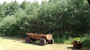 Agroturystyka u Mańka