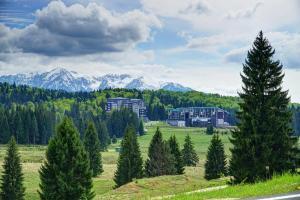obrázek - Silver Mountain Luxury Apartment C42