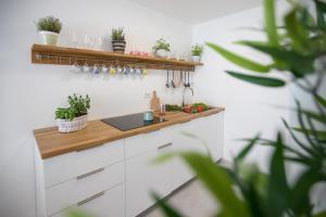 Family Apartment with Garden - Hotel - Ljubljana