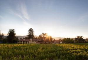 Napa Valley Lodge (2 of 34)