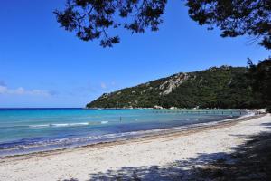 Location gîte, chambres d'hotes Résidence Mobydick dans le département Corse du Sud 2a