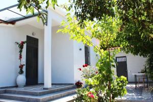 ORANGE GARDEN Achaia Greece