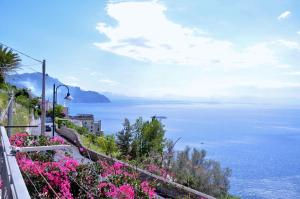 Amalfi Grace House - AbcAlberghi.com