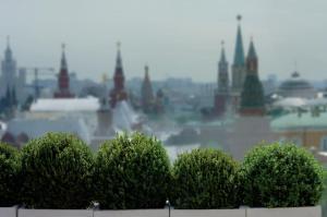 The Ritz-Carlton Moscow (15 of 91)